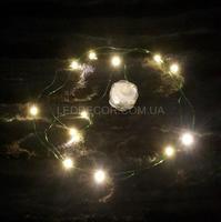 Светодиодная гирлянда Flora Green 12L теплый свет на батарейках